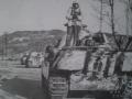 3_SS_Panzer_Division_Hungary